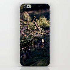 In the Pines iPhone & iPod Skin