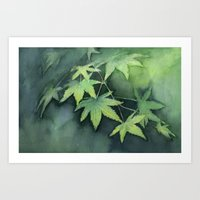 Japanese Maple Watercolor, Green Leaves, Tree Branch Art Print