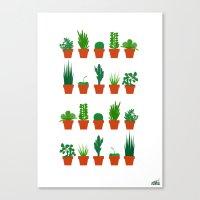Small Plants Canvas Print