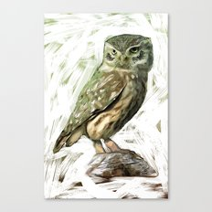 Olive Owl Canvas Print