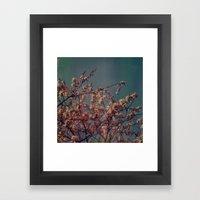 Cherry Blossoms, Polaroi… Framed Art Print