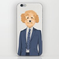 Posing Poodle iPhone & iPod Skin