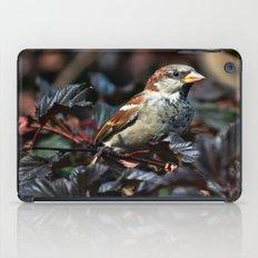 Sparrow iPad Case
