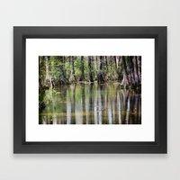 Cypress Mirror Framed Art Print