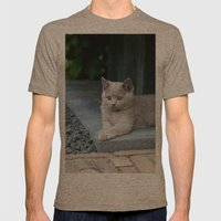 Bikkel the cat ! Mens Fitted Tee Tri-Coffee SMALL