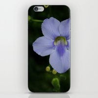 when it pours iPhone & iPod Skin