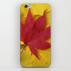 red leaf VII iPhone & iPod Skin