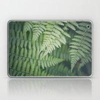 Where the Redwood Fern Grows Laptop & iPad Skin