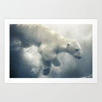 Polar Swim Art Print
