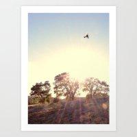 A Hawks View Art Print