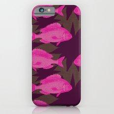 Sealacampus Slim Case iPhone 6s