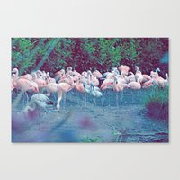 ♢ Pink Flamingos Canvas Print
