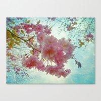 Pink Sakura Canvas Print