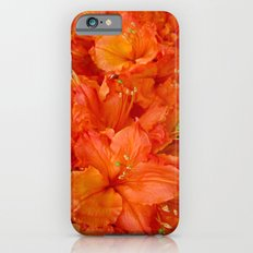 Give me an Orange, Julius iPhone 6s Slim Case