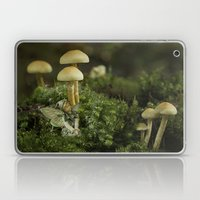 Pixie and 'shrooms Laptop & iPad Skin