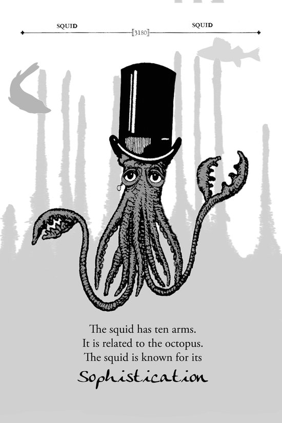Squid Art Print