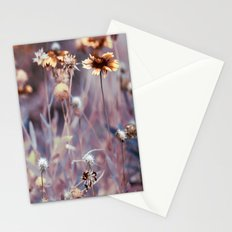 Paint Me a Pretty Picture Stationery Cards