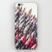 feuervogel iPhone & iPod Skin