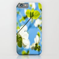 iPhone & iPod Case featuring Dogwood by Maite Pons