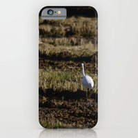 iPhone & iPod Case featuring Egret by rubio700