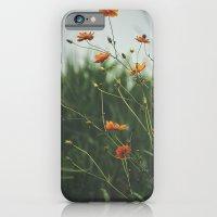 Molecules iPhone 6 Slim Case