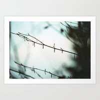 Fragile In The Cold Art Print