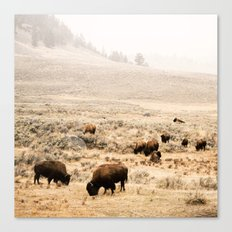 A Snow Storm Blowing In Canvas Print