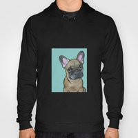 Armand the Frenchie Pup Hoody