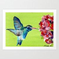 Hummingbird No.2 Art Print