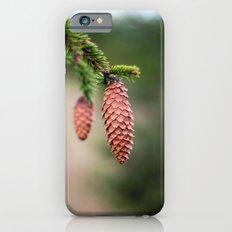 Baby Pine Cones iPhone 6 Slim Case