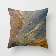 electric scree Throw Pillow