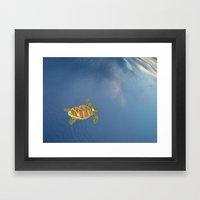 Hawksbill Swimming In Th… Framed Art Print