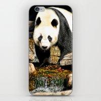Wang Wang iPhone & iPod Skin