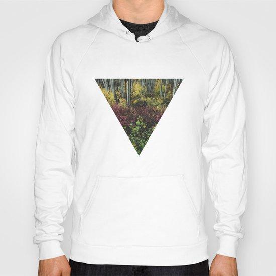 Reverse Pyramid Colors Hoody