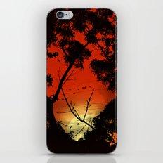Before Sunset iPhone & iPod Skin