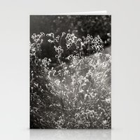 Catching The Light Stationery Cards