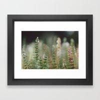 Botanical no. 2 Framed Art Print
