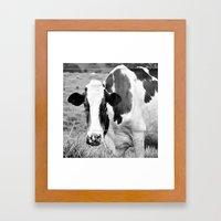 Cow B&W Framed Art Print