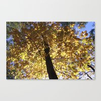 Alive With Fire Leaves Canvas Print