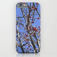 iPhone & iPod Case featuring Blossoms On A Barren Tree by TS Photography