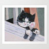 Daisy the Cat Art Print
