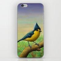Yellow Tit iPhone & iPod Skin
