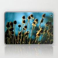 Light Of The Sun Laptop & iPad Skin