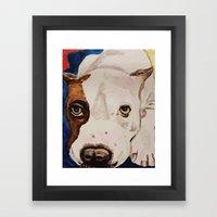 Pit Bull Portrait Framed Art Print