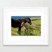 Horses In Landscape Framed Art Print