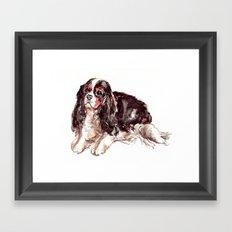 Sweet Spaniel Framed Art Print