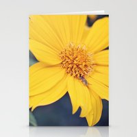 Yellow Jacket Hides Stationery Cards