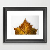 Autumn Leaf - Yellow Framed Art Print