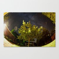 The Tree and the Stars Canvas Print