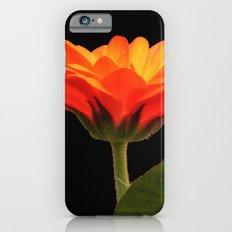 Marigold iPhone 6s Slim Case
